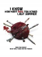 Watch I Know How Many Runs You Scored Last Summer Online Free