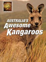 Watch Australia's Awesome Kangaroo's Online Free