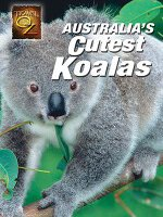Watch Australia's Cutest Koala's Online Free